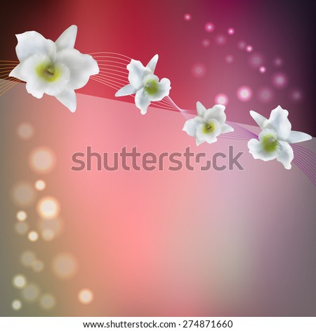 flower purple background with white blossom orchid - stock vector