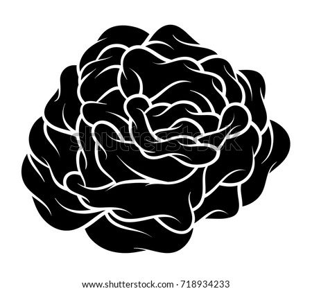 Flower rose black white isolated on stock vector 718934233 flower rose black and white isolated on white background vector illustration mightylinksfo
