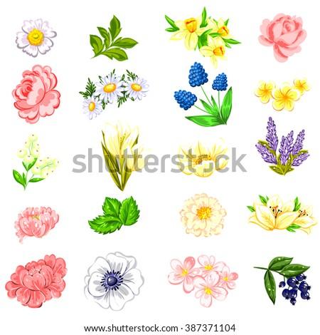 Flower set - stock vector