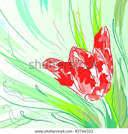 Flower tulip with leaves. Floral background, greeting card.