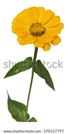 Flower Zinnia Low Poly Vector