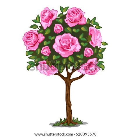 Interior womens room pink vector stock vector 373132144 shutterstock flowering tree bonsai with pink flowers isolated on white background vector cartoon close up mightylinksfo