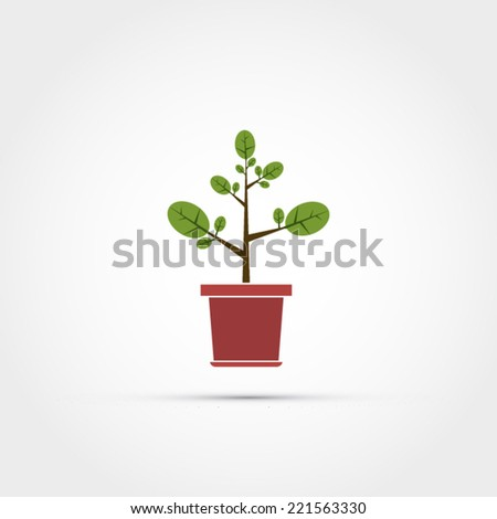 Flowerpot with a plant
