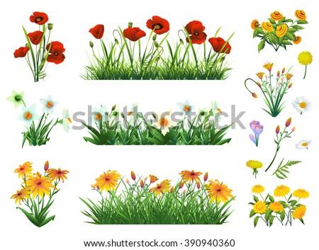 Flowers and grass set of vector elements. Nature and ecology - stock vector