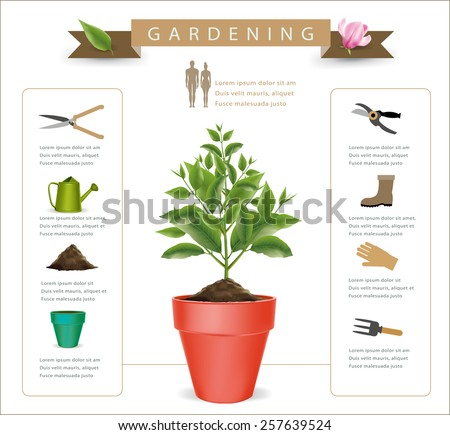 Flowers are blooming in a pot infographics.vector - stock vector
