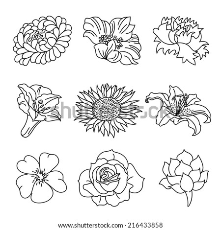 Flowers Collection - stock vector