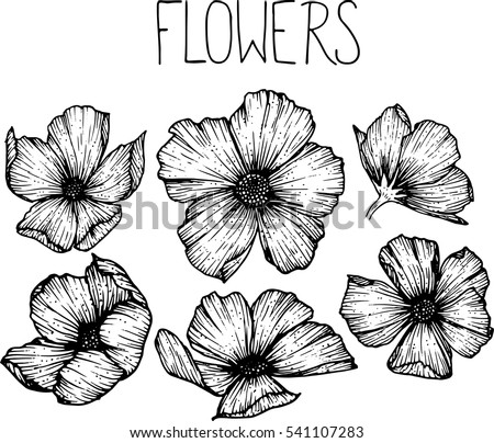 Flowers drawing vector illustration clipart stock vector 541107283 flowers drawing vector illustration and clip art thecheapjerseys Choice Image