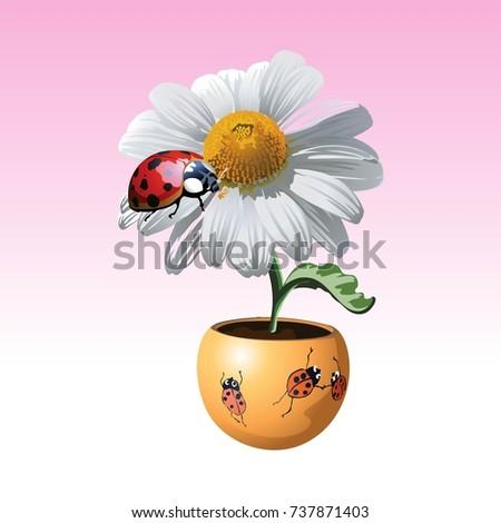 Flowers Vase Cartoon Vector Illustration Stock Vector Royalty Free