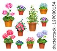 Flowers in pots.  Vector collection - stock