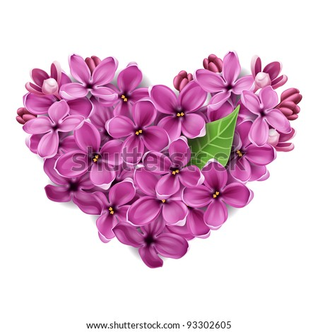 Flowers of a lilac in the form of a heart. An illustration on a theme of Valentine's day - stock vector