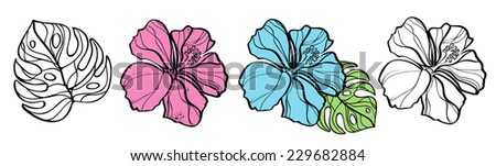Flowers of hibiscus and palm leaf isolated on white, vector illustration - stock vector