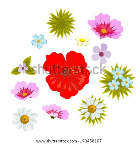 Flowers set. Vector collection