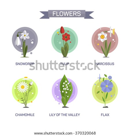 Flowers vector set isolated on white background. Illustration in flat style design. Icons and emblems. Tulip, camomile, snowdrop, lily, narcissus, flax. - stock vector