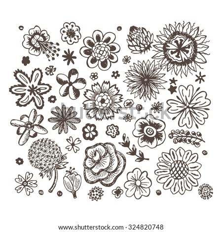 Flowers. Vector set of sketched flowers. Doodle flowers. - stock vector