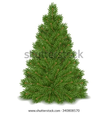 Fluffy green Christmas tree ready to decorating. Isolated on white background. Vector illustration. - stock vector