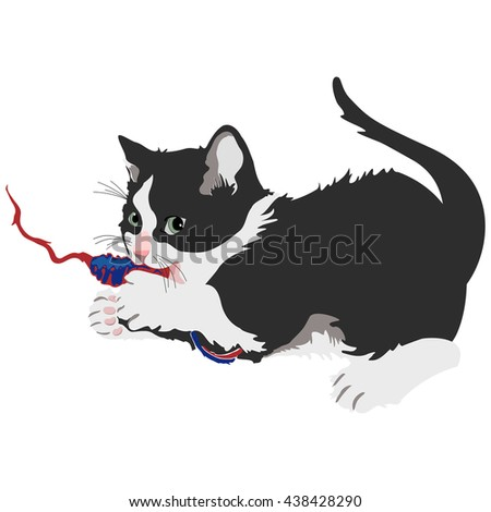 Fluffy Kitten Playing With Toy On White - Cute fluffy grey and white kitty cat playing with a string toy on a white background, cartoon kitten vector. - stock vector