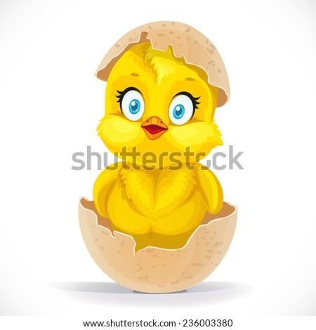 Fluffy little cartoon chick hatched from an egg isolated on a white background - stock vector