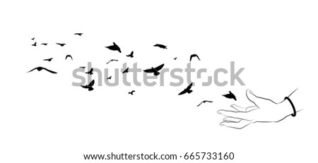 Flying birds and hand silhouettes on white background. Vector il