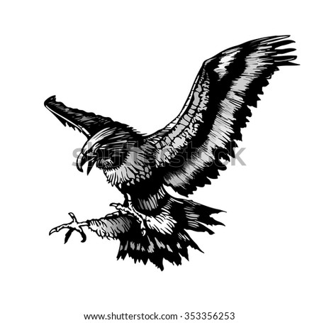 Hawk Claws  Encode clipart to Base64  msr7net
