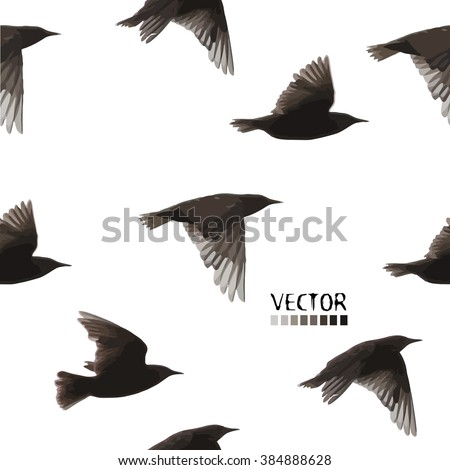 flying starling. Seamless background.  Vector - stock vector