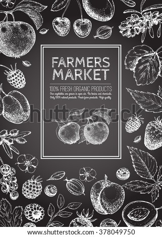 Food design template. Vintage farm logo, fruits and berries. Logotype. Hand drawn vector illustration. Farmers market. Style of etching. Layout. Sketch. Chalk.