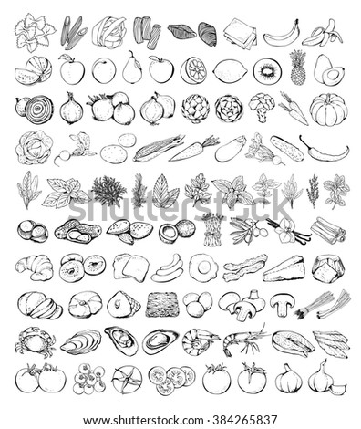 Food set vector isolated on white background, hand drawn vegetables, fruits, pasta, herbs and spiced, seafood, bakery, eggs, cheese, nuts, mushrooms, fish