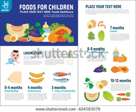 Set Protein Food Healthy Plan Vitamins Minerals Stock Vector