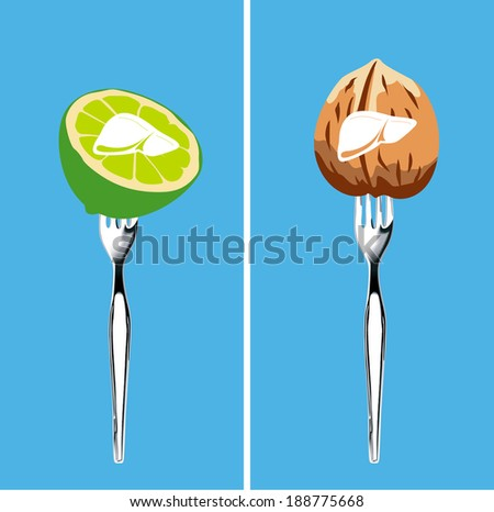 foods that cleanse the liver, Illustrator, vector - stock vector