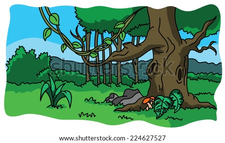 Forest and nature illustration