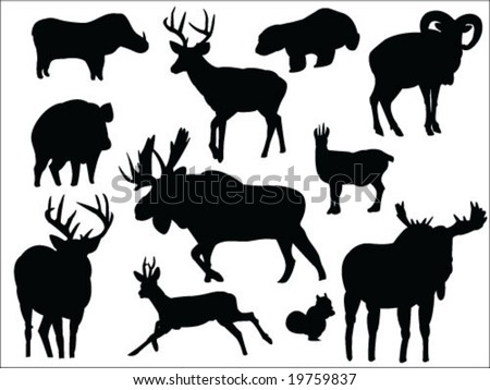 Forest animals silhouettes collection2 - stock vector