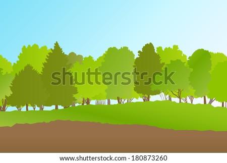 Forest in summer vector background landscape - stock vector