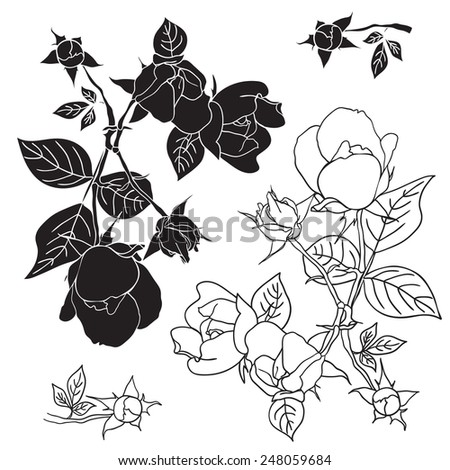 Four black and white roses. Vector illustration. Elements for design tattoo, textiles, prints. - stock vector