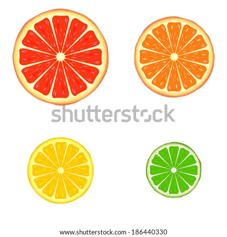 Four bright citrus slices: grapefruit, orange, lemon and lime