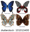 Four exotic butterflies with names - stock photo