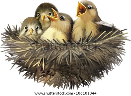 Four hungry baby sparrows in a nest wanting the mother bird to come and feed them, Bird nest with young birds - stock vector