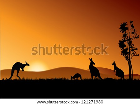 four kangaroos feeding in the bright sunset - stock vector