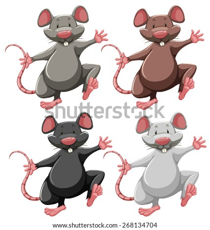 Four mice of different colors - stock vector