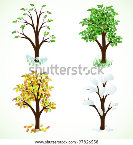 Four season trees. Spring, summer, autumn, winter - stock vector