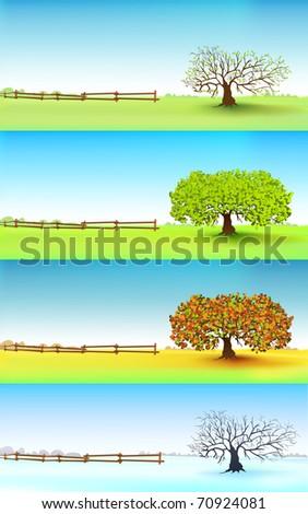 Four seasons tree, vector - stock vector