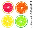 Four slices of citrus fruits - stock vector