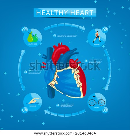 Four steps to healthy heart. Infographics about healthy heart. Healthy lifestyle. Structure of human heart. - stock vector
