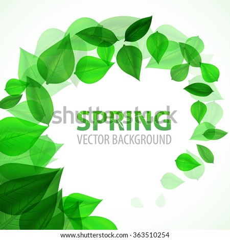 frame branch with fresh green leaves. Vector Illustration - stock vector