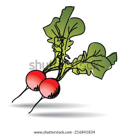 Freehand drawing radish icon - vector eps 10 illustration - stock vector