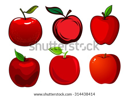 Fresh and ripe red apple fruits with green leaves and smooth shiny skin isolated on white background - stock vector