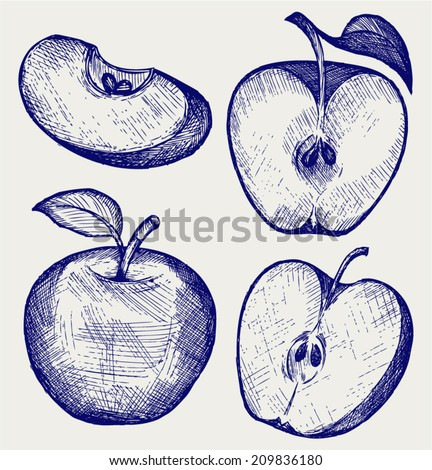 Fresh apple with leaf and slice. Doodle style - stock vector