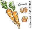 Fresh carrots whole sliced & carrot sticks vector illustration - stock