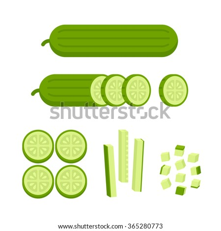 Fresh cucumber: cut, sliced and cubed. Cooking illustration in modern flat vector style.