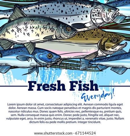Mackerel pike stock images royalty free images vectors for Fresh fish store