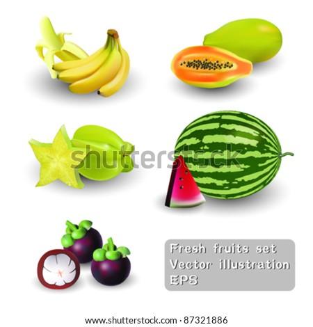 Fresh fruits set Vector Illustration