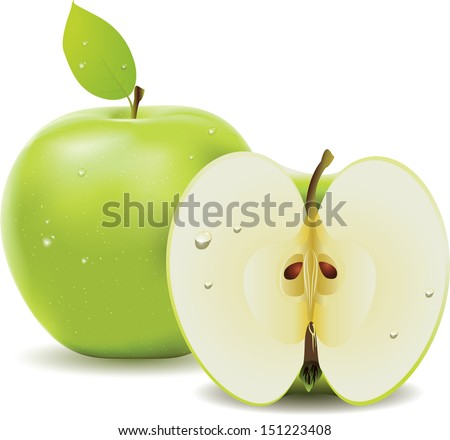 Fresh green apple with leaf and half of apple on white background - stock vector